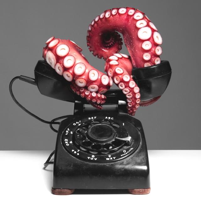 Max-Shuster-Octopus