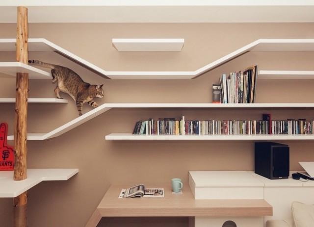 Cat-House6-640x463