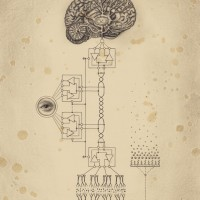 ConsciousnessSystem