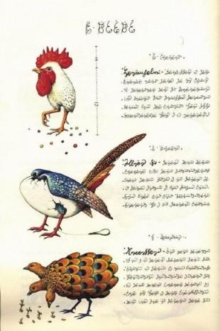 codex38