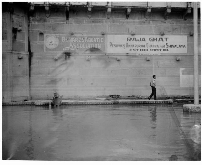 Angelo Cricchi, Gange