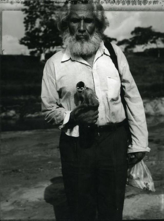 Angelo Cricchi, La scimmia