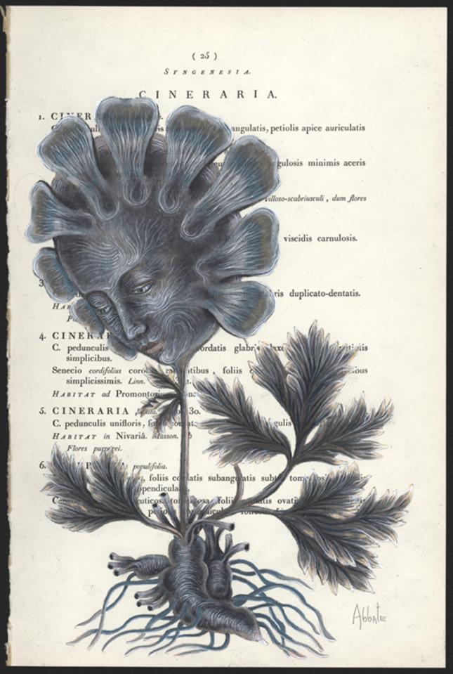 Abbate_A-Spoken-Flower-page-25