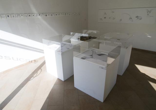 installazione-galleria-artesucarte-modena-2013