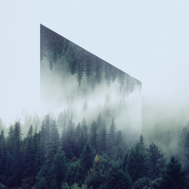 Geometric reflection 4