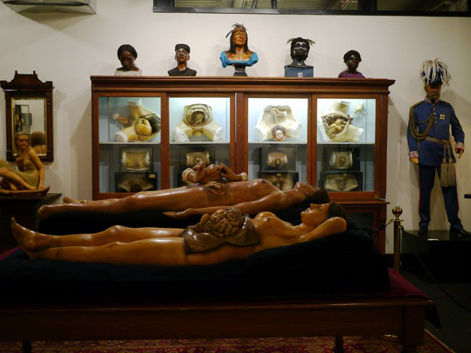 Museum of morbid anatomy
