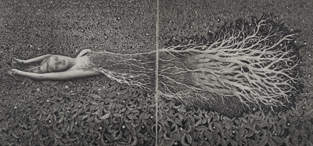 Alessia Iannetti_The Fallen Tree