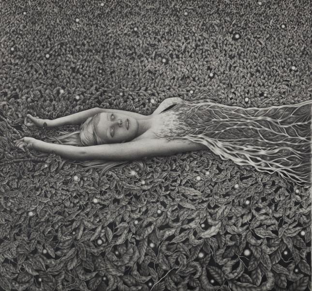 Alessia Iannetti_The Fallen Tree_pt1