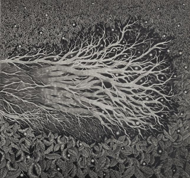 Alessia Iannetti_The Fallen Tree_pt2