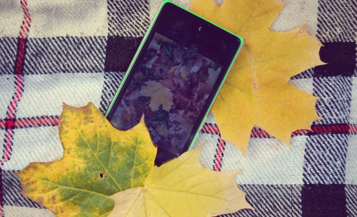 PlantSnap: una app che ti permette di conoscere le piante